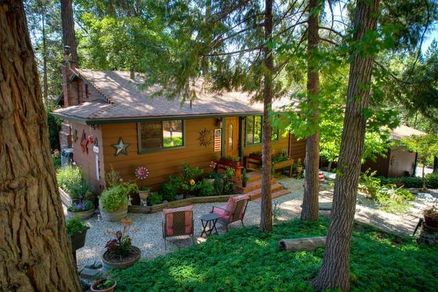 6169 Rolling Court, Georgetown, CA 95634 (MLS #221071429) :: eXp Realty of California Inc