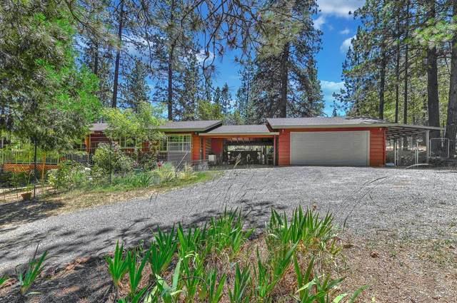 17669 Arden Court, Pine Grove, CA 95665 (#221071753) :: Rapisarda Real Estate