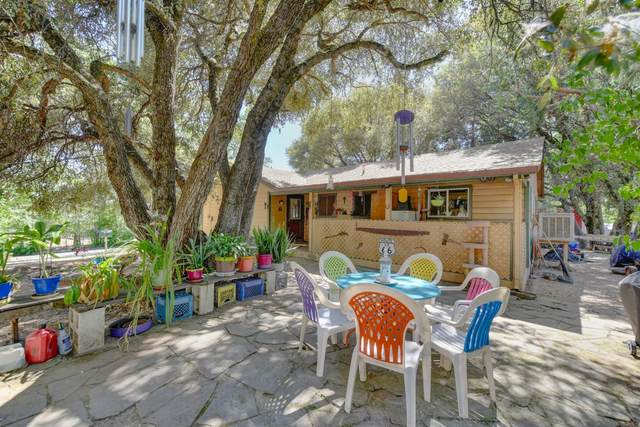 6271 Grizzly Flat Road, Somerset, CA 95684 (MLS #221072111) :: Heather Barrios