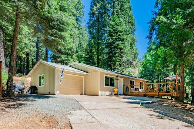 3231 Sly Park Road, Pollock Pines, CA 95726 (MLS #221072254) :: Live Play Real Estate   Sacramento
