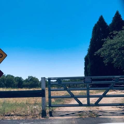 0 Miller Way, Plymouth, CA 95669 (MLS #221072435) :: Keller Williams - The Rachel Adams Lee Group