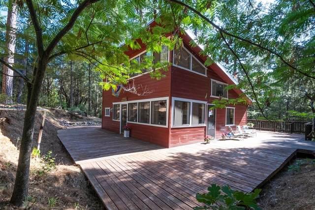 3255 Iowa Hill Road, Colfax, CA 95713 (MLS #221072909) :: The Merlino Home Team