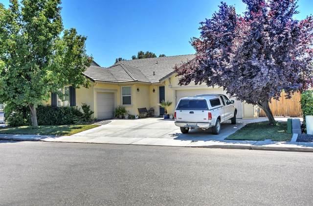 777 Hagerman Peak Drive, Newman, CA 95360 (MLS #221073632) :: Heather Barrios