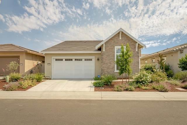 4009 Equator Lane, Roseville, CA 95747 (MLS #221073692) :: Heather Barrios