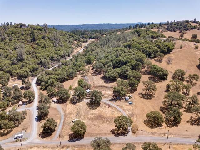 3531 Magic Morgan Trail, Cool, CA 95614 (MLS #221073982) :: Heather Barrios