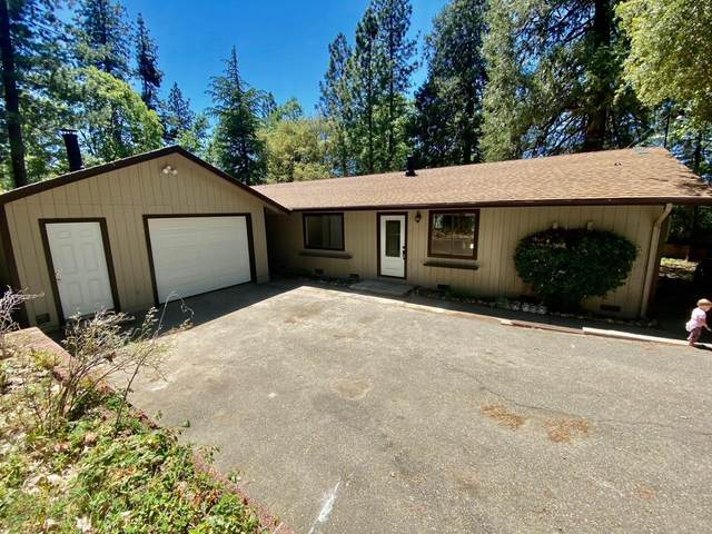 6424 Red Robin Road, Placerville, CA 95667 (MLS #221074353) :: Heather Barrios