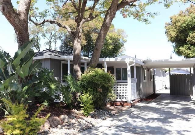 68 Centre Street, Mountain View, CA 94041 (MLS #221074485) :: Heather Barrios