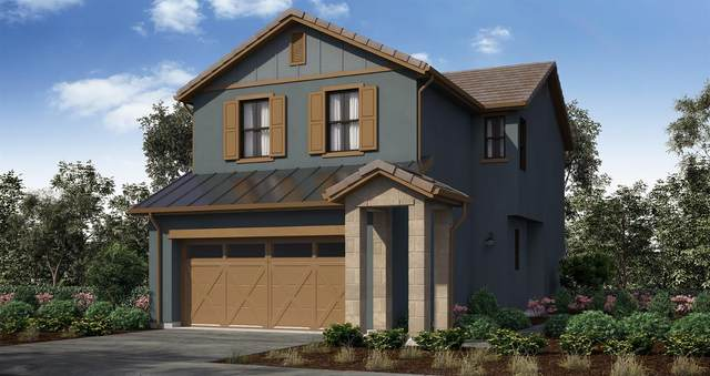8376 Tannic Drive, Sacramento, CA 95829 (MLS #221075716) :: Heidi Phong Real Estate Team