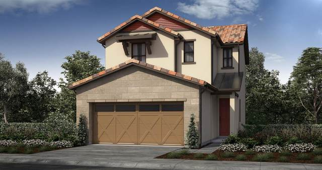 8381 Tannic Drive, Sacramento, CA 95829 (MLS #221075722) :: Heidi Phong Real Estate Team
