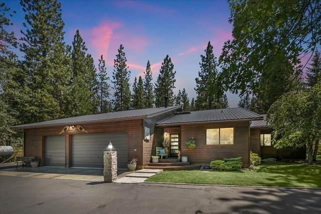 461 Janesville Grade, Janesville, CA 96114 (MLS #221075892) :: Keller Williams Realty