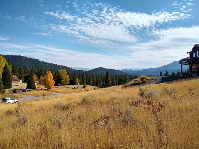 3484 Grizzly Road, Portola, CA 96122 (MLS #221076745) :: Heidi Phong Real Estate Team
