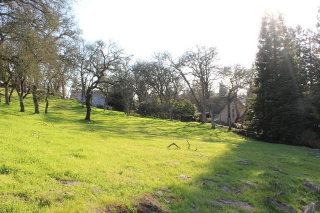14835 Guadalupe, Rancho Murieta, CA 95683 (MLS #221081382) :: Deb Brittan Team