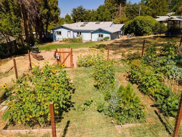 10061 Mills Road, Grass Valley, CA 95945 (MLS #221081524) :: Keller Williams - The Rachel Adams Lee Group