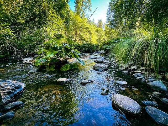 4517 Lynn Boulevard, West Point, CA 95255 (MLS #221081818) :: Keller Williams Realty