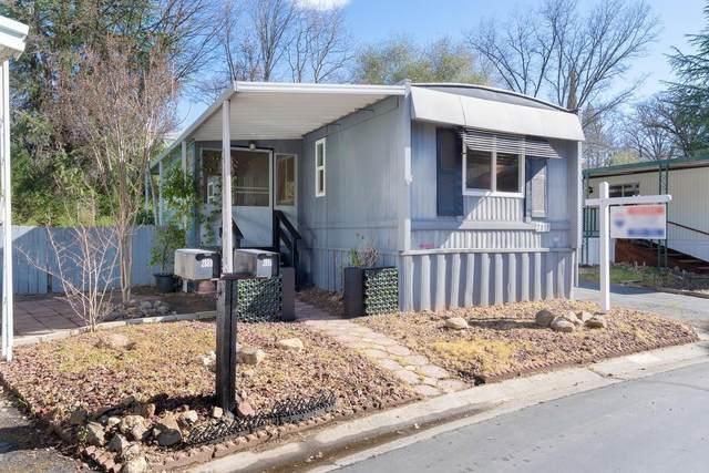 2891 Creek View Lane, Placerville, CA 95667 (MLS #221082810) :: Live Play Real Estate | Sacramento
