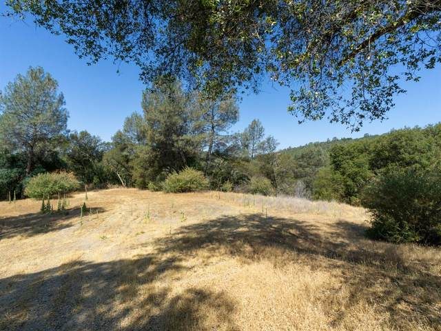 0 Rancho Montes Drive, Placerville, CA 95667 (MLS #221085108) :: Deb Brittan Team