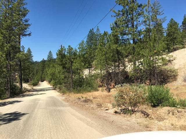 14509 Gas Canyon Road, Nevada City, CA 95959 (MLS #221087312) :: Keller Williams - The Rachel Adams Lee Group