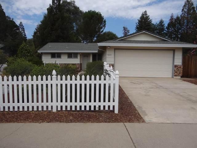 5605 Arcadia Avenue, Loomis, CA 95650 (MLS #221087757) :: Keller Williams - The Rachel Adams Lee Group