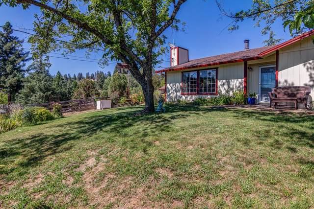5310 Marshall Road, Garden Valley, CA 95833 (MLS #221088219) :: The Merlino Home Team