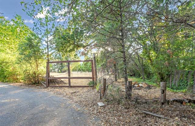 2855 Molly Lane, Placerville, CA 95667 (MLS #221088556) :: 3 Step Realty Group