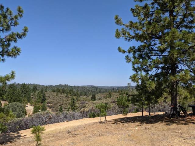 6661 Kelsey Canyon Road, Placerville, CA 95667 (MLS #221089783) :: The Merlino Home Team