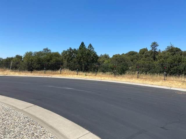 2828 Winesap Circle, Placerville, CA 95667 (MLS #221089832) :: Heather Barrios