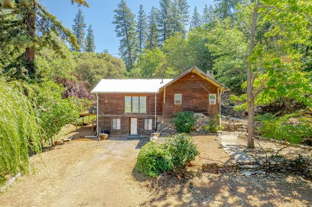 21020 This Is It Lane, Colfax, CA 95713 (MLS #221089884) :: 3 Step Realty Group