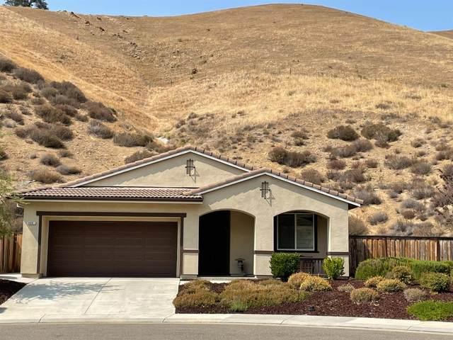 9061 Golf Canyon, Patterson, CA 95363 (MLS #221090556) :: Deb Brittan Team