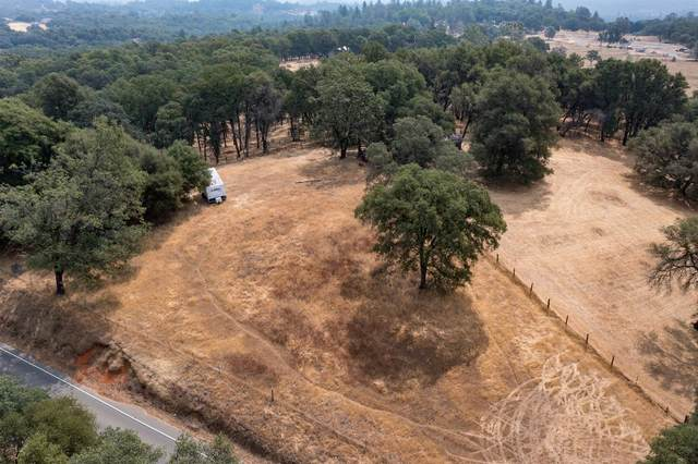 13788 Wolf Road, Grass Valley, CA 95949 (MLS #221091407) :: Jimmy Castro Real Estate Group