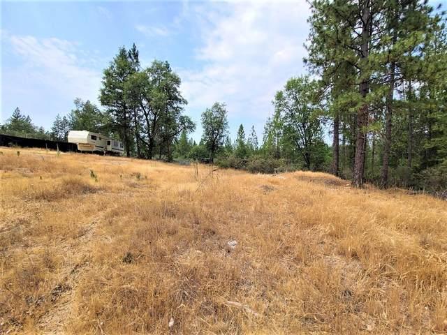 1402 Meredith Lane, Rail Road Flat, CA 95248 (MLS #221091534) :: Live Play Real Estate | Sacramento