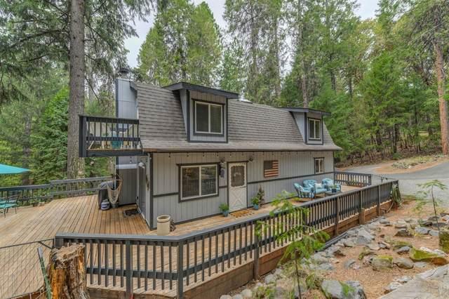 16199 Pioneer Creek Road, Pioneer, CA 95666 (MLS #221092502) :: Deb Brittan Team