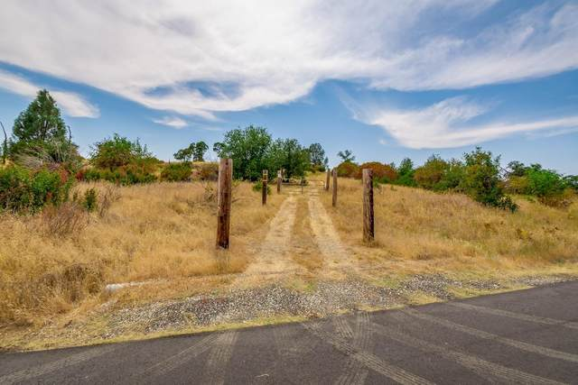 4809 Cantle Road, Copperopolis, CA 95228 (MLS #221092648) :: 3 Step Realty Group