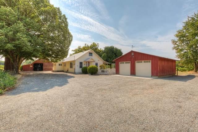 450 Sheldon Avenue, Gridley, CA 95948 (MLS #221094331) :: The Merlino Home Team