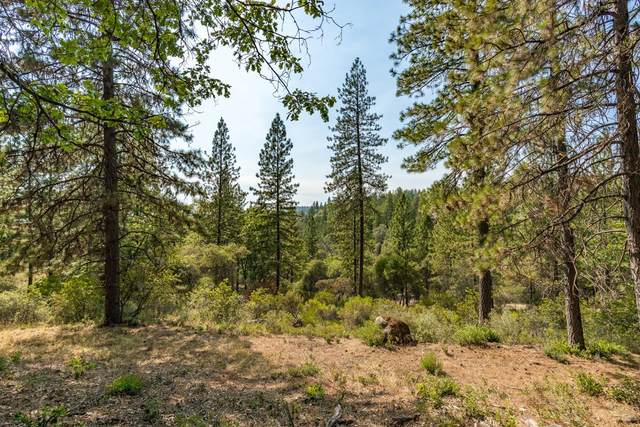 1230 Forest View Drive, Meadow Vista, CA 95722 (MLS #221094438) :: eXp Realty of California Inc