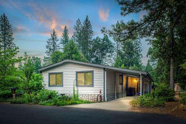 14437 Marysville Road #11, Camptonville, CA 95922 (MLS #221094534) :: The Merlino Home Team