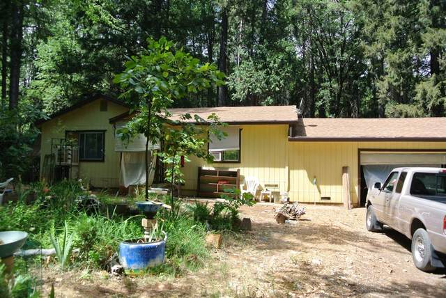 5890 Rand Al Road, Foresthill, CA 95631 (MLS #221094536) :: eXp Realty of California Inc