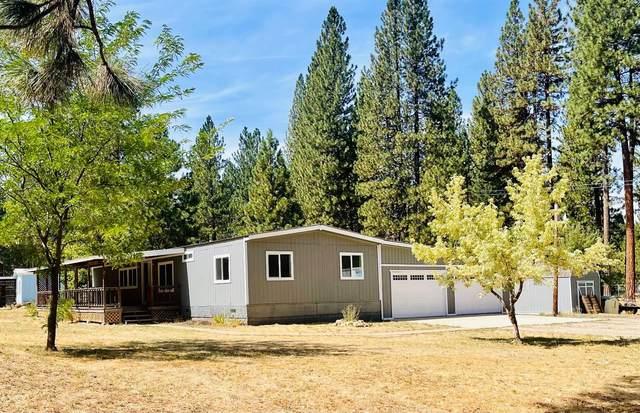 90 Easy Street, Meadow Valley, CA 95956 (MLS #221096271) :: Heidi Phong Real Estate Team