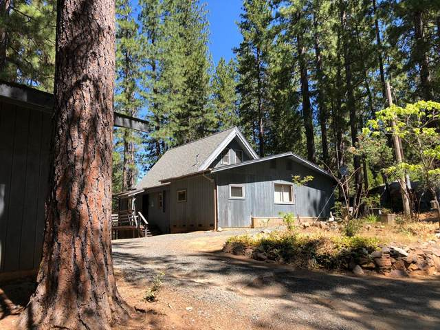 2839 Lily Gap Road, West Point, CA 95255 (MLS #221098196) :: Heather Barrios