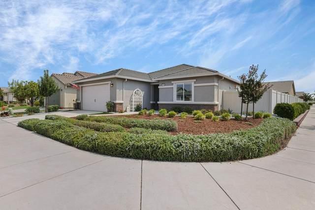 2708 Shadow Berry Drive, Manteca, CA 95336 (MLS #221099819) :: Heidi Phong Real Estate Team