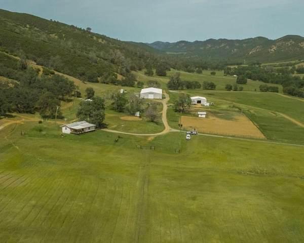 5009 Rail Canyon Road, Stonyford, CA 95979 (#221100003) :: Rapisarda Real Estate