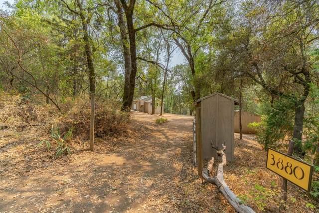 3880 Bridgeport School Road, Fiddletown, CA 95629 (MLS #221101300) :: REMAX Executive