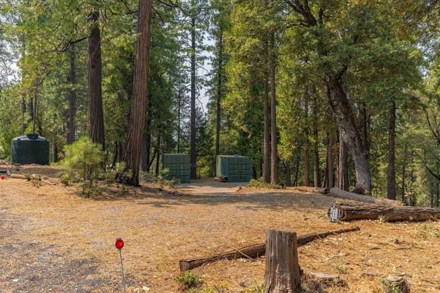 19412 Ponderosa Drive, Pioneer, CA 95666 (MLS #221101510) :: 3 Step Realty Group