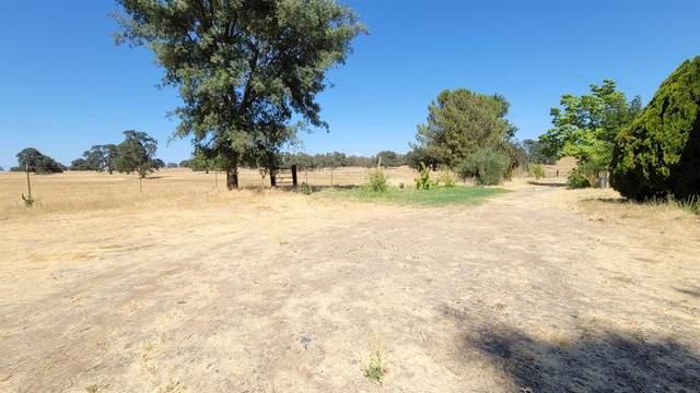 7155 Dave Brubeck Road, Ione, CA 95640 (MLS #221102798) :: Live Play Real Estate   Sacramento