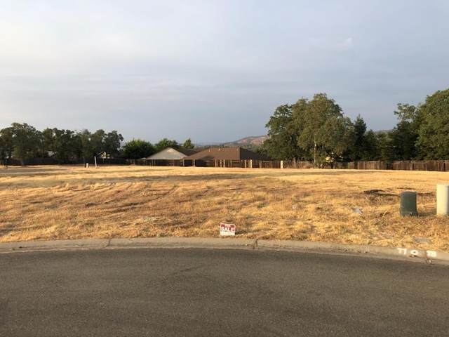 0 Stepping Stone Court, Oroville, CA 95966 (MLS #221103146) :: ERA CARLILE Realty Group