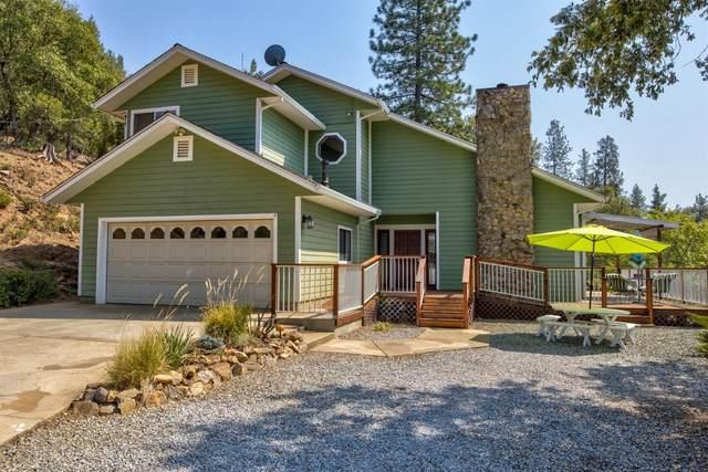 20650 Dunshee Road, Pine Grove, CA 95665 (MLS #221103645) :: Keller Williams - The Rachel Adams Lee Group