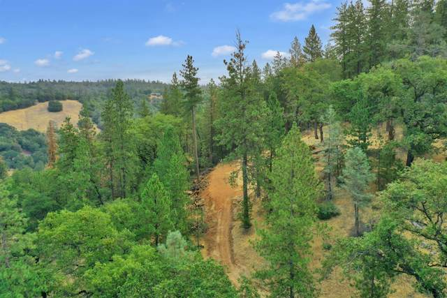 19225 Moroni Lane, Grass Valley, CA 95949 (MLS #221103796) :: 3 Step Realty Group