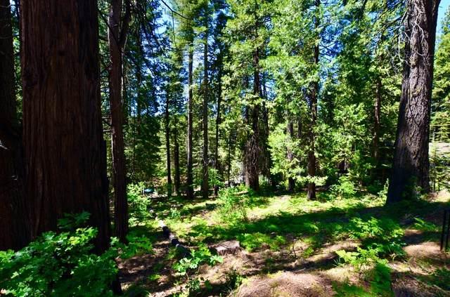 3080 Pine Lake, Arnold, CA 95223 (MLS #221105700) :: REMAX Executive