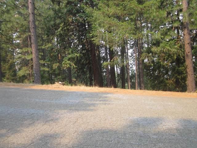 5293 Pine Ridge Drive, Grizzly Flats, CA 95636 (MLS #221105770) :: REMAX Executive