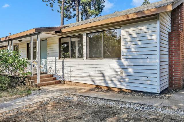 10090 West Drive, Grass Valley, CA 95945 (MLS #221106479) :: REMAX Executive