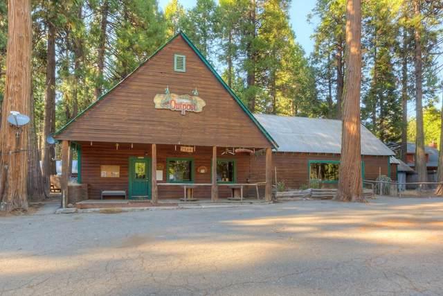 7589 Humboldt Rd, Butte Meadows, CA 95942 (MLS #221107226) :: Heidi Phong Real Estate Team